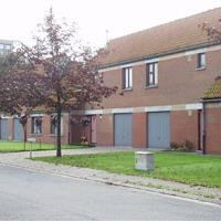 Boterbloemstraat